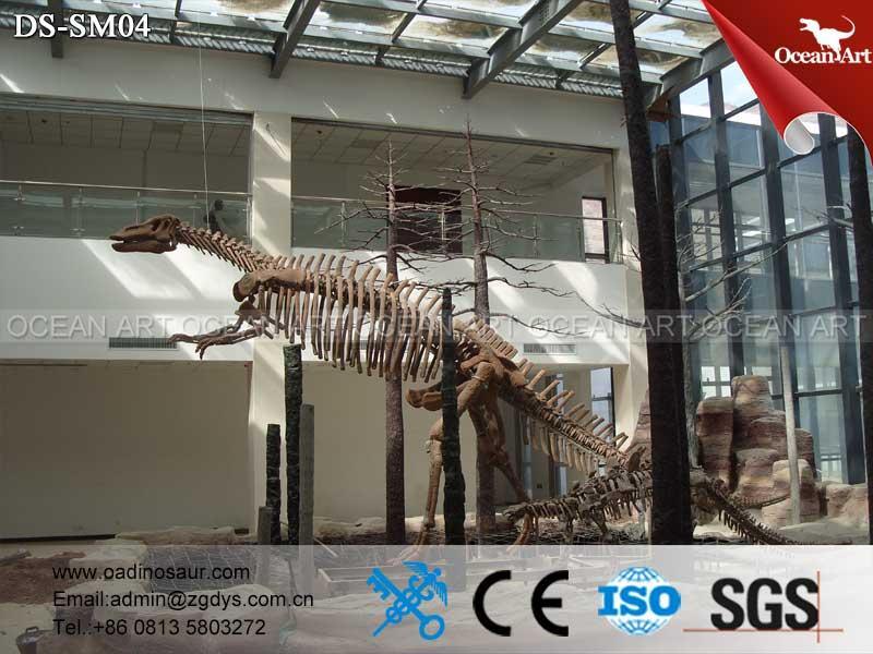 China_skeleton_replica_of_animated_dinosaur_skeleton