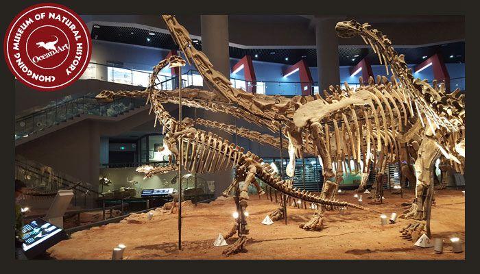 Dinosaur_Museum_2