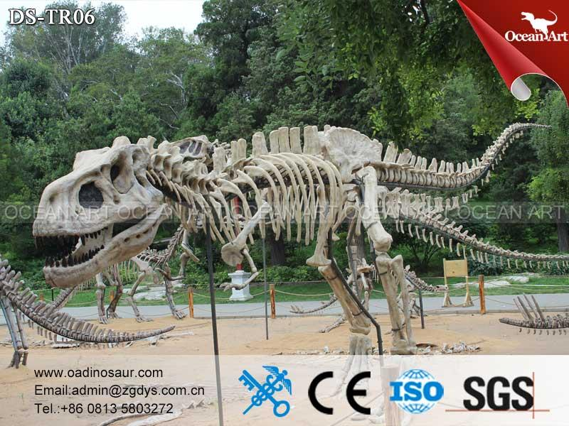dinosaur_fossil_Life_Size_Dinosaur_Fossil_and_Skeleton_Model