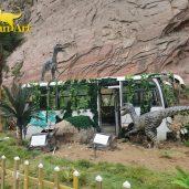 Dinosaur Valley (4)